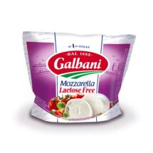 Mozzarella Lactose Free Galbani 100g - Galbani